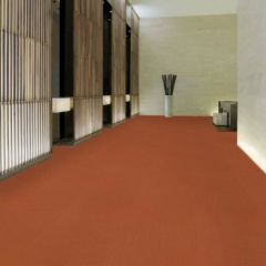 Color Accents Wall to Wall Carpet, West Los Angeles Carpet Showroom
